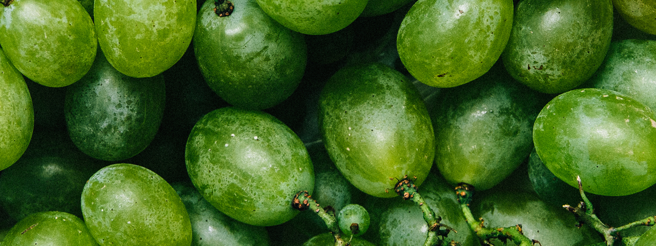 White grapes, a base for fruit fillings we offer in fruit preserves.